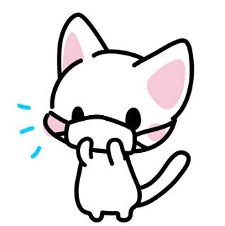 マスクした猫.png